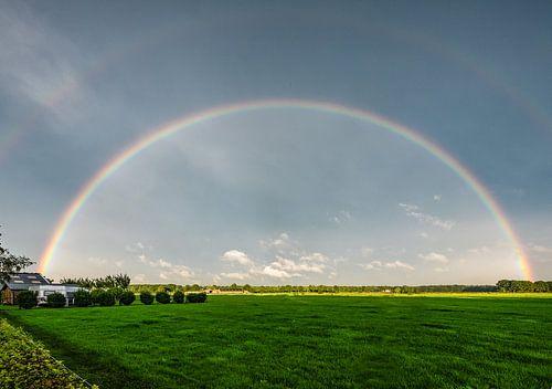 Regenboog boven een weiland van