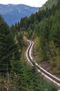 Spoorweg in Manning National Park van Annemie Lauvenberg