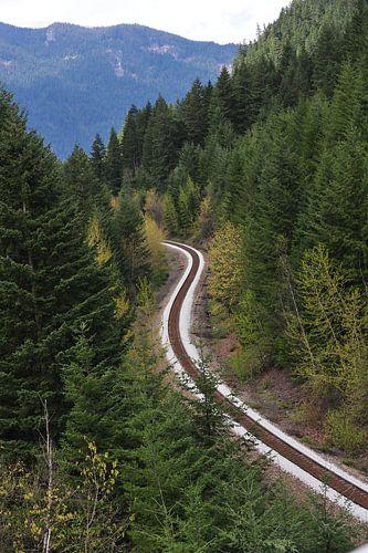 Spoorweg in Manning National Park von Annemie Lauvenberg