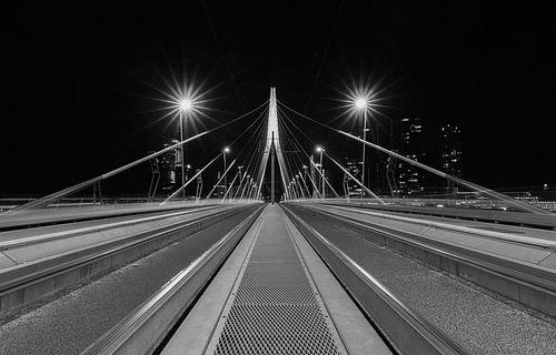 De Erasmusbrug in Rotterdam vanuit een uniek standpunt