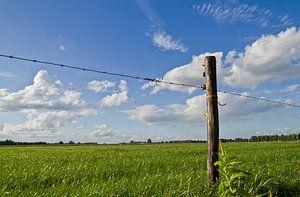 Wiesenmast in einer Wiese mit holländischen Wolken von FHoo