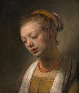 Jonge Vrouw met een rode halsband, de stijl van Rembrandt