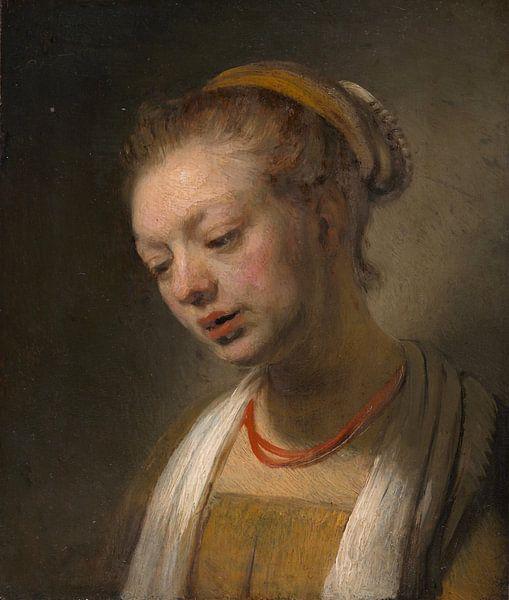 Jonge Vrouw met een rode halsband, de stijl van Rembrandt van Rembrandt van Rijn