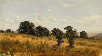 Waldlandschaft von Carlos de Haes im Herbstgras, Antike Landschaft