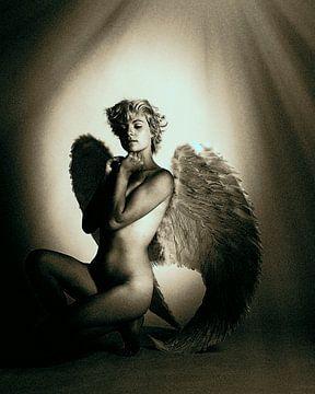 Engel 6 van Jeroen Schipper