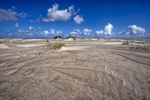 Schiermonnikoog duinen