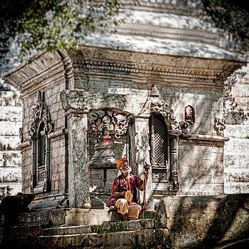 Sadu in Kathmandu Nepal 3