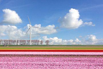 Schöne Niederlande (Tulpenfeld und Linien) von Fotografie Jeronimo