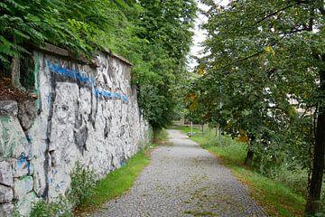 Prag - Parkweg nach oben von Wout van den Berg