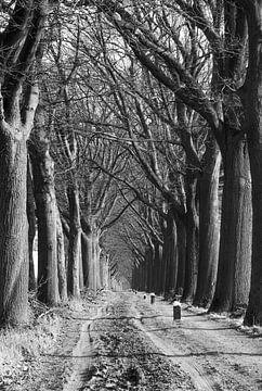 Zandweg in Aalten von Hans Monasso