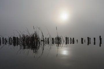 In den Nebel von Peter Bartelings Photography