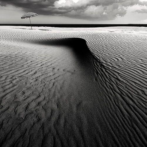 Umbrella on the beach...............