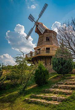 Turkse Windmolen van Roland's Foto's