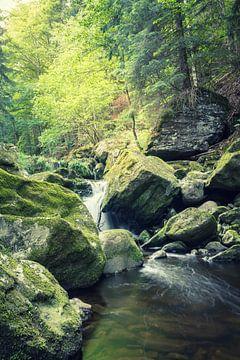 Die wilde Klamm im Bayerwald von Tobias Luxberg