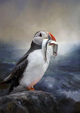 Papegaaiduiker Met Vissen Schilderij van Diana van Tankeren