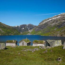 Sogn og Fjordane Norway van Eriks Photoshop by Erik Heuver