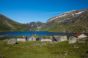 Sogn og Fjordane Norway van
