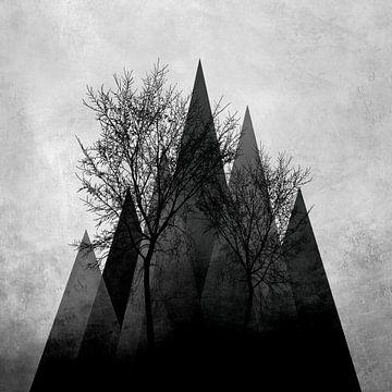 TREES VI van Pia Schneider