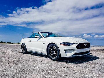 Cooles Bild eines schönen weißen Mustang GT Cabrios von Jennifer Petterson