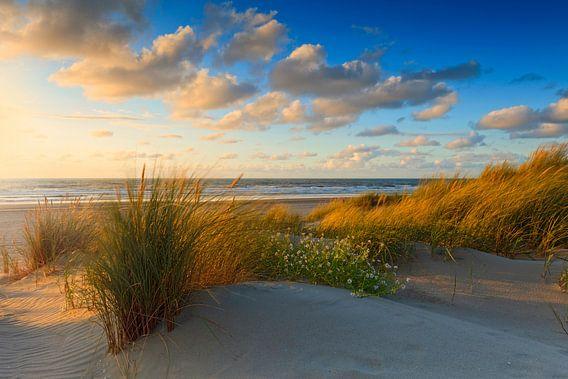 zonsondergang achter de Hollandse duinen