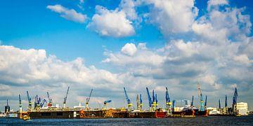 Panorama haven van Hamburg met kranen en droogdokken van Dieter Walther