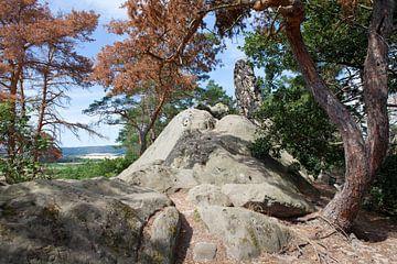 Duivelsmuur bij Blankenburg (Harz) in Saksen-Anhalt van t.ART