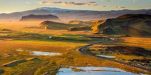 IJsland Landschap Dyrholaey van