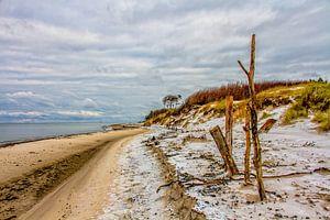 Der Darsser Weststrand im Winter