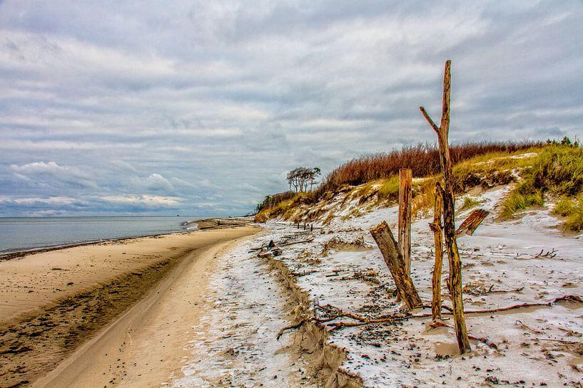 Der Darsser Weststrand im Winter von Holger Felix
