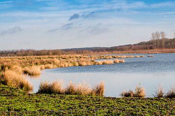 beruhigenden Natur Niederlande Limburg von Rene Wassenbergh