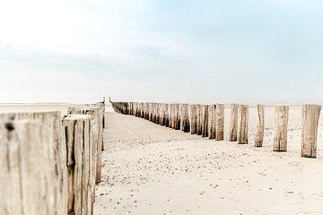 Postes sur la plage