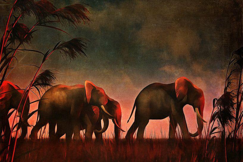 Dierenrijk – Olifanten lopen samen naar hun drinkplaats van Jan Keteleer