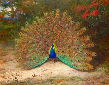 Archibald Thorburn. Pfau und Schmetterling