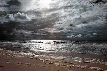 De wilde zee van