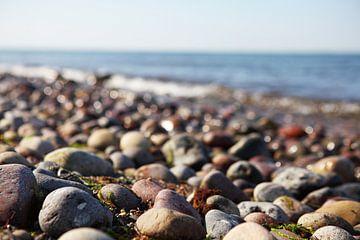 Steine an der Küste des Meeres