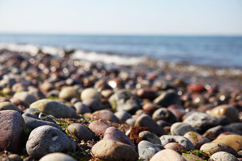 Pierres sur le rivage de la mer sur Frank Herrmann