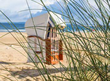 Strandkorb mit Dünengras an der Ostsee von Animaflora PicsStock