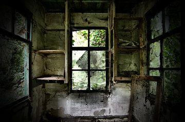 Fenster, Urbex Belgien von Taco Bijlsma