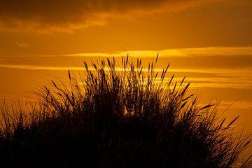 Zonsopkomst strand Schiermonnikoog van