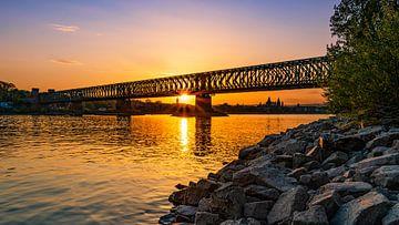 Zuidbrug Mainz van Jens Sessler