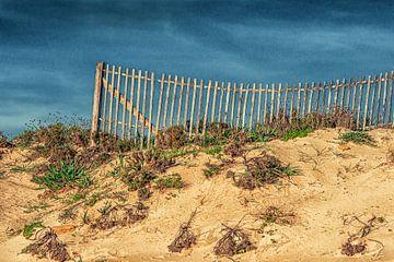 Holzzaun auf einer Düne von Luc de Zeeuw