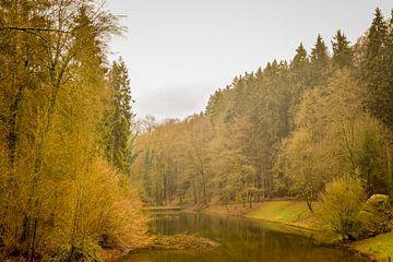Natuurfoto Mullerthal, Luxemburg van Janet Kleene