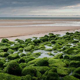 Green stones van Davy Sleijster
