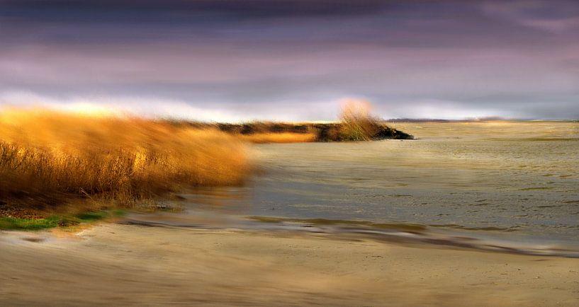 Seewind van Vera Laake