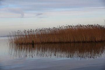 Fluessen - Elahuizen - Meer- Rietkraag - Friesland van Fotografie Sybrandy