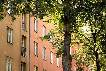 Natur in Stockholm von Karijn Seldam