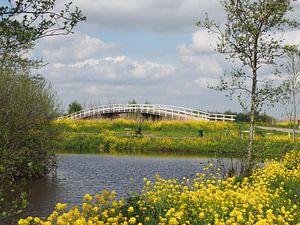 Fietsbrug in Alblasserwaard