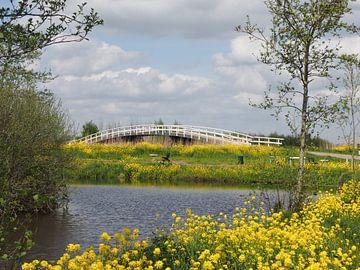 Fietsbrug in Alblasserwaard van Beeldbank Alblasserwaard