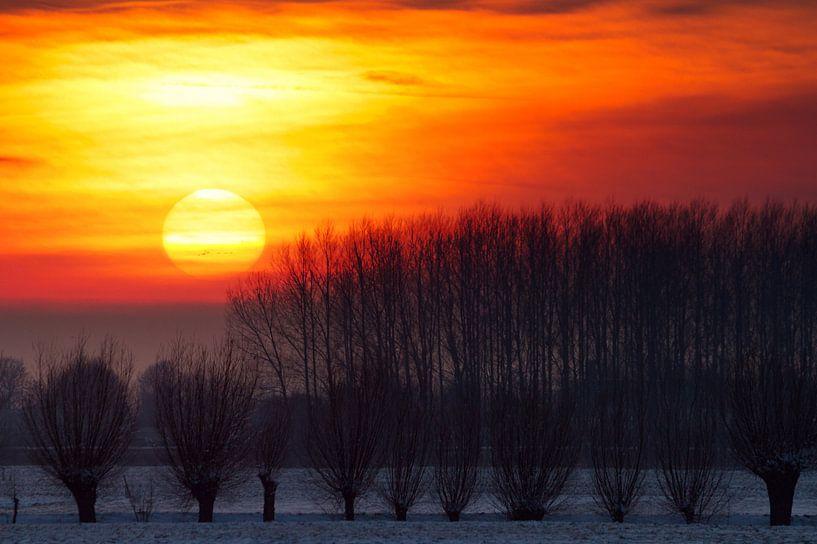 Winter zonsondergang van Dennis van de Water