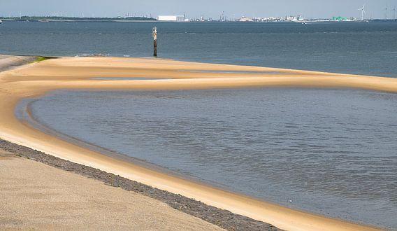 0290 Sandbar
